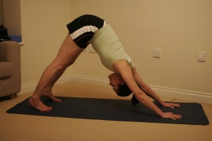 Adho Mukha Svanasana - Downward Facing Dog