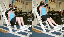 Hack Squat Machine Exercise
