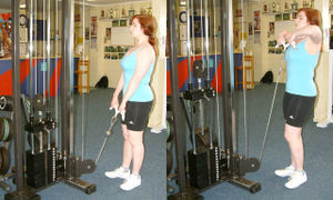 / images/weight-training/300px-Cable Machine Upright Row