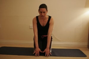 Simhasana - The lion yoga pose