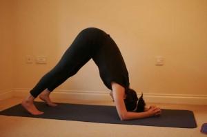 Makarasana - Dolphin Yoga Pose