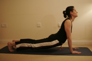 Upward-Facing Dog Yoga Pose -  Urdhva Mukha Svanasana