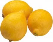 Lemon and Lime Detox