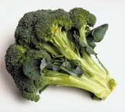 a head of broccoli