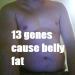 belly fat 13 genes
