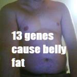 belly fat 13 genes