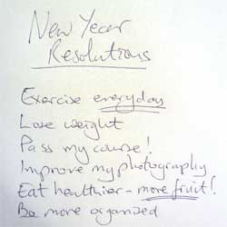 2013 New Year Resolution to Lose Weight and Get Fit