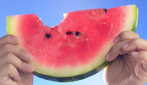 Person holding a watermelon