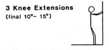 Gandy knee extensions