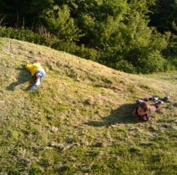 Kids rolling down a hill