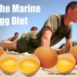 Marine egg diet