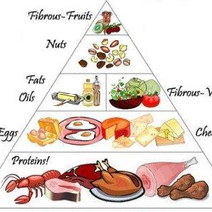 Stever Cooksey food-pyramid