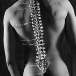 Diagram of spine projected onto man back 1