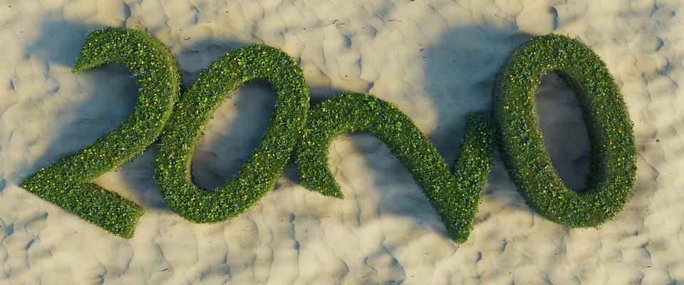 2020 grass on sand